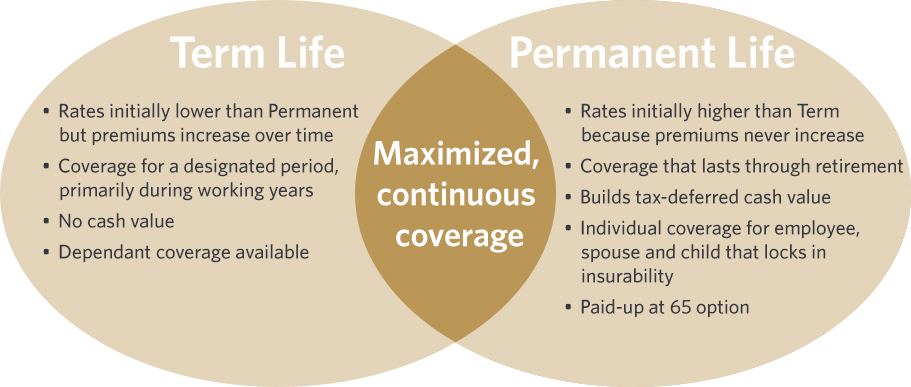 Voluntary Life Insurance Plans For Employers L Guardian Anytime Delectable Permanent Life Insurance Quotes